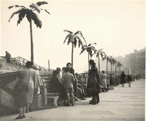 Photo:Artificial palms outside Joyland on the Sea Front
