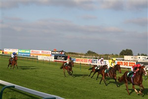 Photo:5 Horses racing home